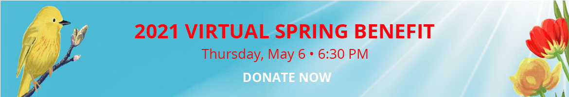 2021 Virtual Spring Benefit - Thursday, May 6, 6:30pm - Donate Now